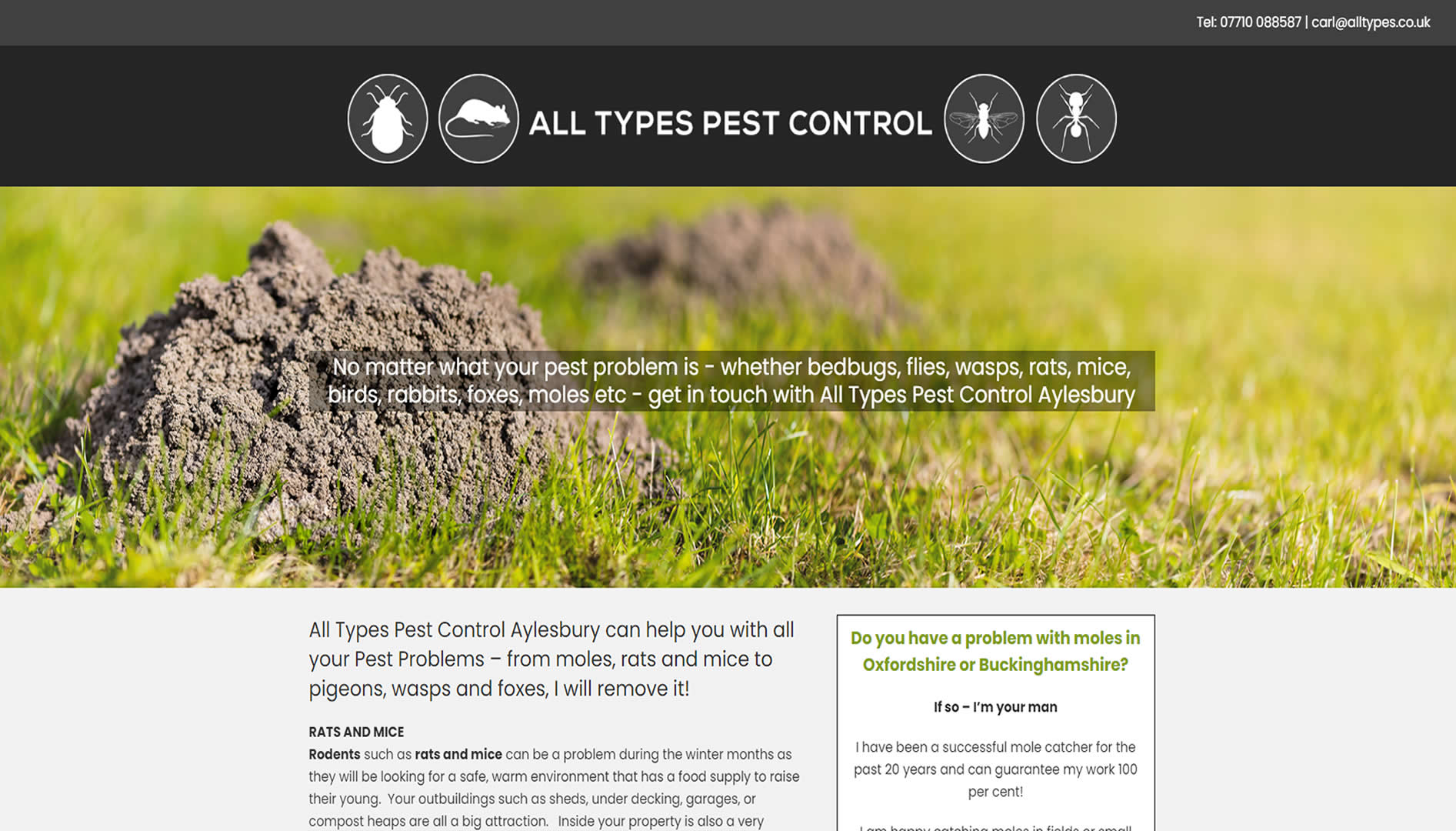 All Types Pest Control